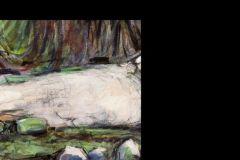 Cader-Idris-Rocks-crop-with-small-rocks-enlarged-1
