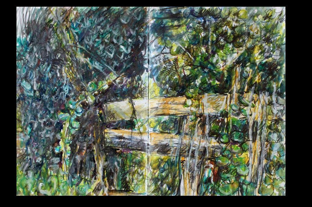 IMG_2884c1-Custom-Cropped-fence-sketch
