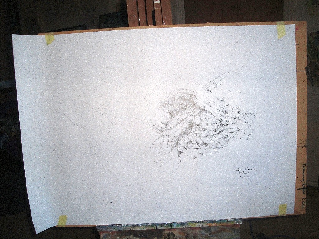 2nd viking drawing on board for scale
