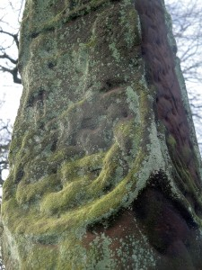 Gosforth cross close-up 8