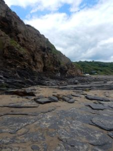 cliff runswick bay