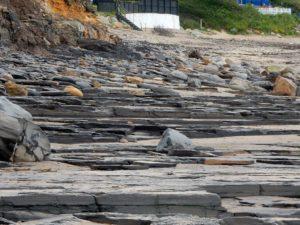 horizontal slabs runswick bay