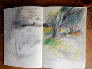 yellow garden sketch