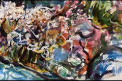 Furry-seaweed-Boggle-Hole-rock-pool-Ks-image-enlarged